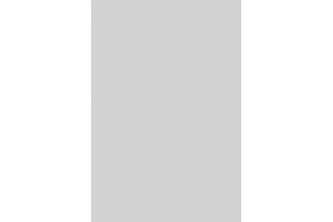 Light Grey SR